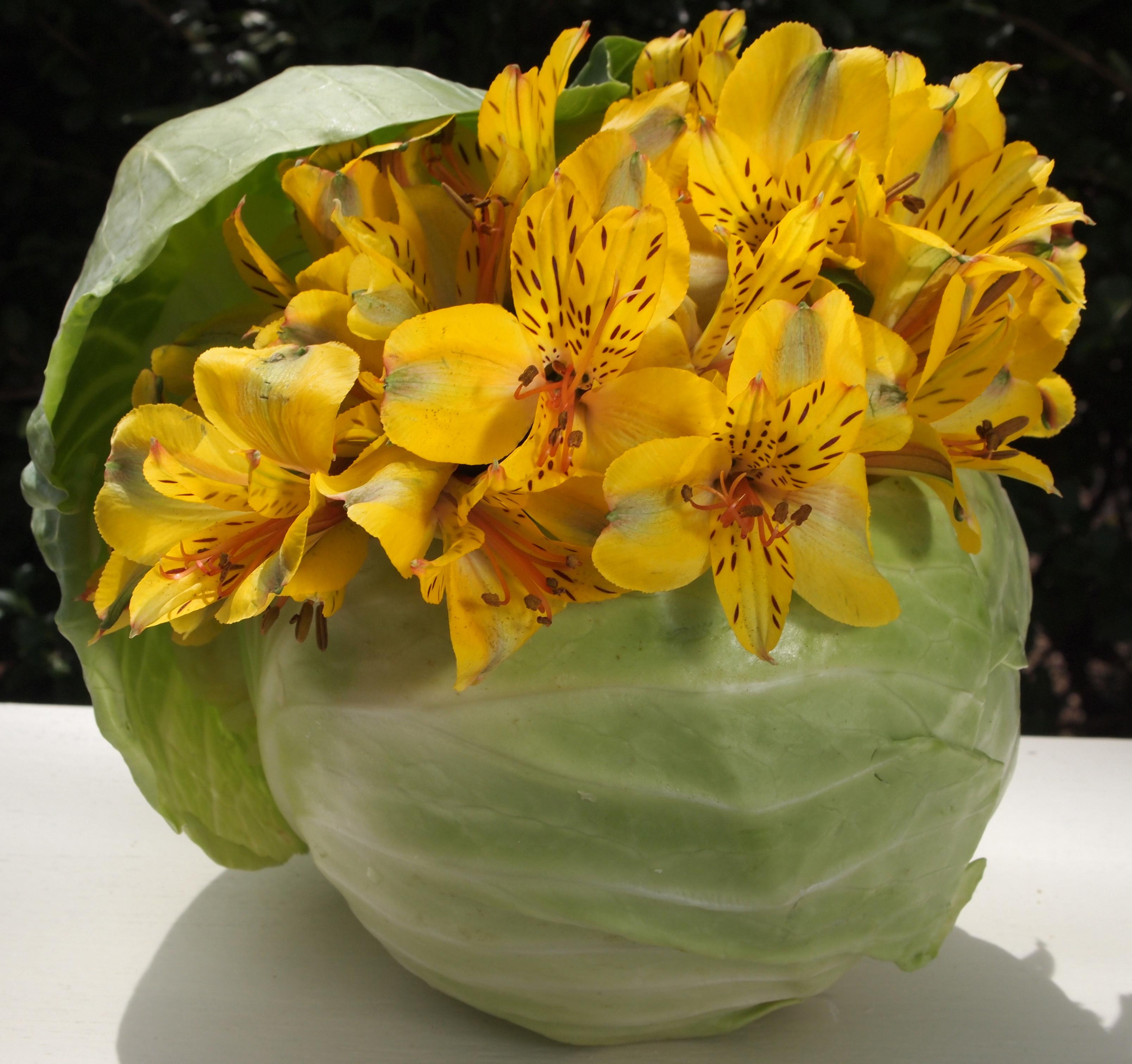 Inexpensive Flower Arrangements